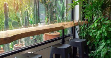 Bar Garden DIY